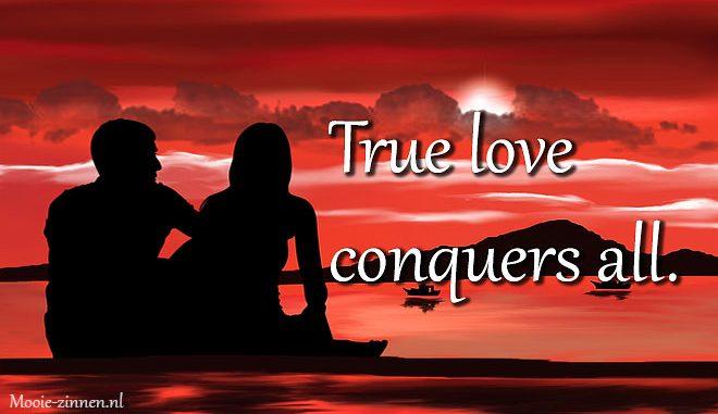 Liefdes teksten en liefdes zinnen